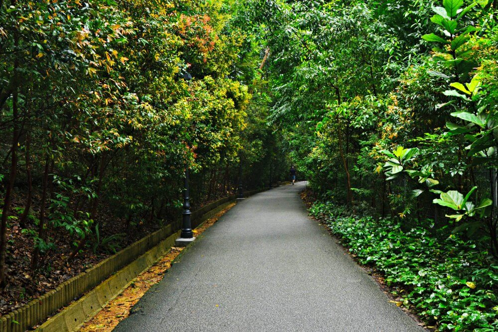 Botanic Gardens | Nomaddictives